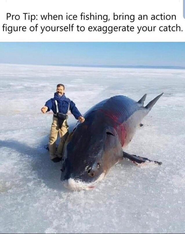 Fish - Pro Tip: when ice fishing, bring an action figure of yourself to exaggerate your catch.
