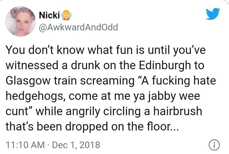 """Text - Nicki @AwkwardAndOdd You don't know what fun is until you've witnessed a drunk on the Edinburgh to Glasgow train screaming """"A fucking hate hedgehogs, come at me ya jabby wee cunt"""" while angrily circling a hairbrush that's been dropped on the floor... 11:10 AM · Dec 1, 2018"""