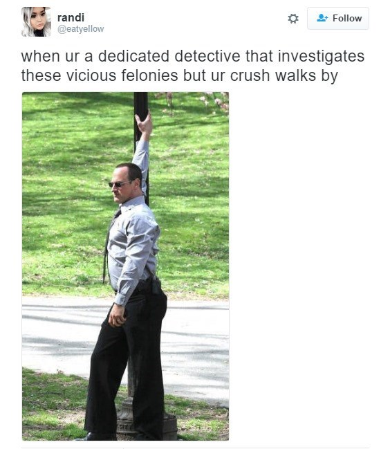 law and order meme - Text - randi @eatyellow Follow when ur a dedicated detective that investigates these vicious felonies but ur crush walks by