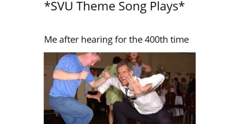 law and order meme - Photo caption - *SVU Theme Song Plays* Me after hearing for the 400th time