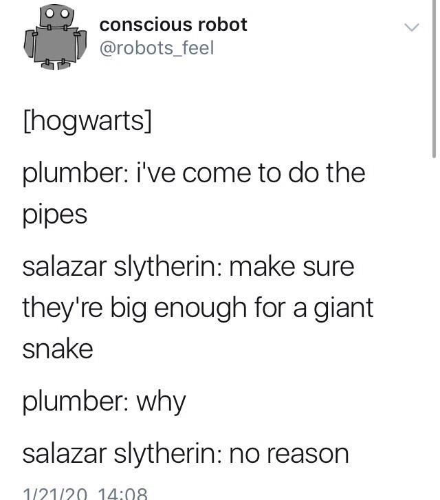 Funny Twitter meme about a plumber coming to work at Hogwarts and Salazar Slytherin wanting the pipes to be big enough for a giant snake to fit in