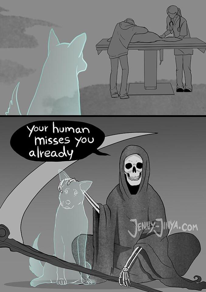 Cartoon - your human misses you already JENYYA.COM