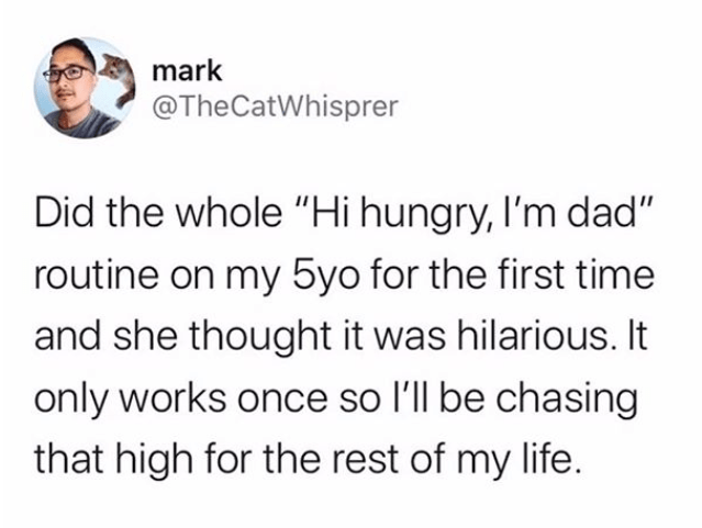 """Text - mark @TheCatWhisprer Did the whole """"Hi hungry, l'm dad"""" routine on my 5yo for the first time and she thought it was hilarious. It only works once so l'll be chasing that high for the rest of my life."""