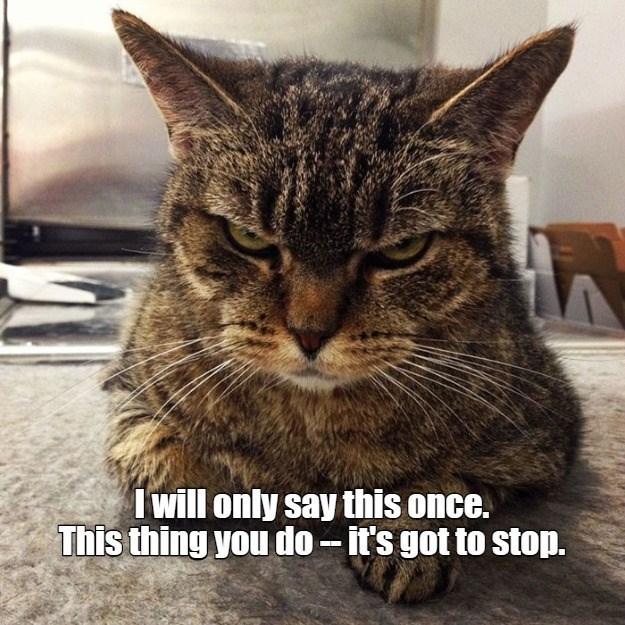 Cat - I will only say this once. This thing you do- it's got to stop.