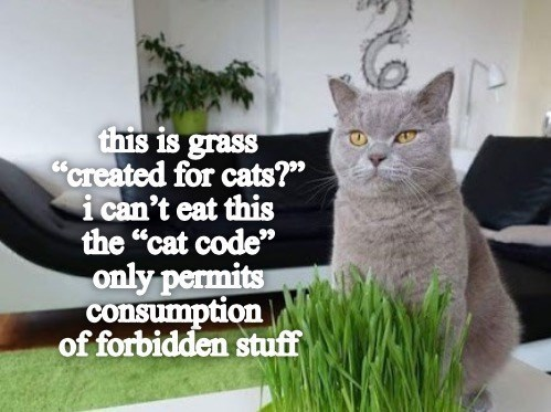 """Cat - this is grass """"created for cats?"""" i can't eat this the """"cat code"""" only permits consumption of forbidden stuff"""