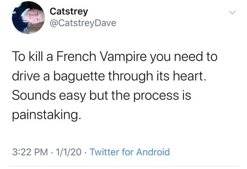 Text - Catstrey @CatstreyDave To kill a French Vampire you need to drive a baguette through its heart. Sounds easy but the process is painstaking. 3:22 PM · 1/1/20 · Twitter for Android