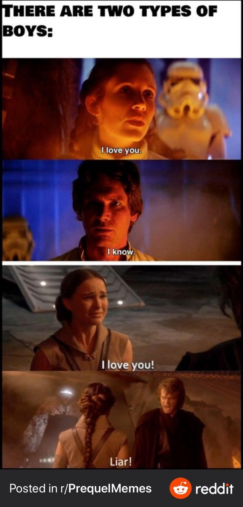 Movie - THERE ARE TWO TYPES OF BOYS: I love you. I know. I love you! Liar! Posted in r/PrequelMemes & reddit