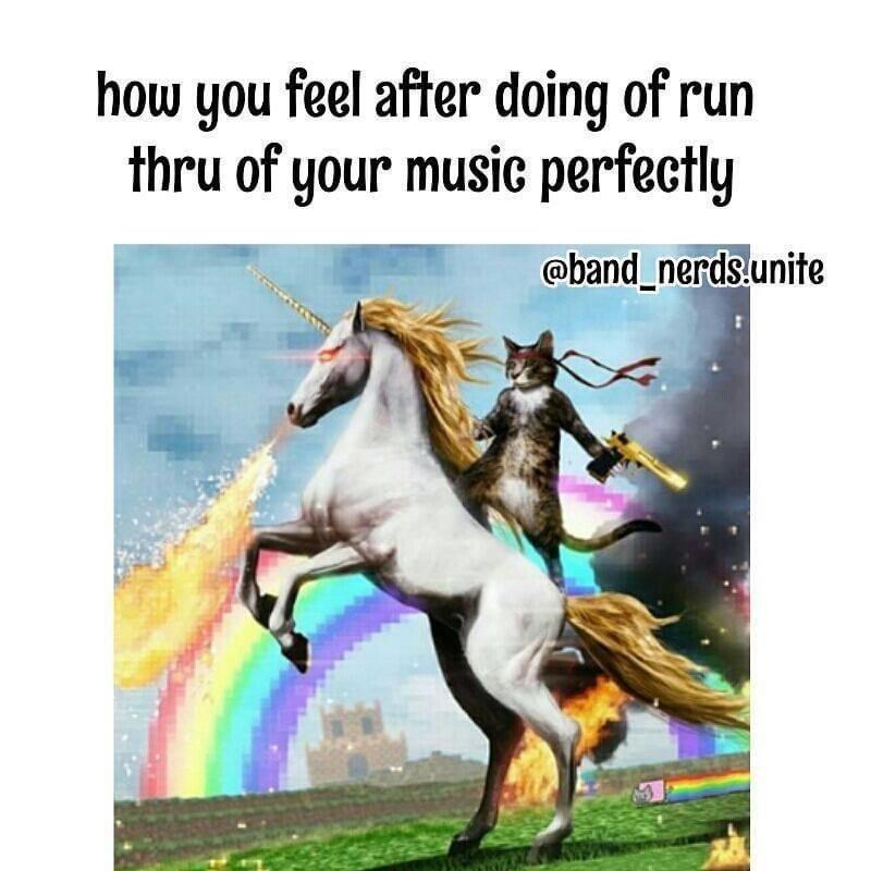 Organism - how you feel after doing of run thru of your music perfectly @band_nerds.unite