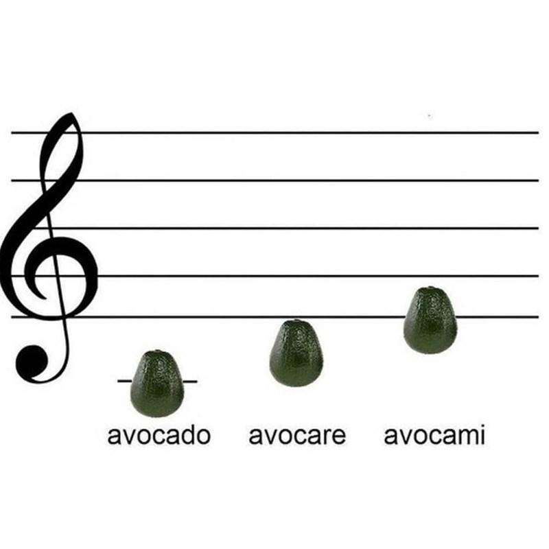 Line - avocado avocare avocami