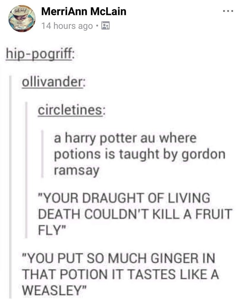 """Text - MerriAnn McLain ... 14 hours ago hip-pogriff: ollivander: circletines: a harry potter au where potions is taught by gordon ramsay """"YOUR DRAUGHT OF LIVING DEATH COULDN'T KILL A FRUIT FLY"""" """"YOU PUT SO MUCH GINGER IN THAT POTION IT TASTES LIKE A WEASLEY"""""""