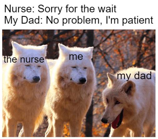 Mammal - Nurse: Sorry for the wait My Dad: No problem, I'm patient the nurse' me my dad