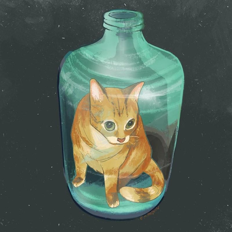 Cat - EM.PAQUIN