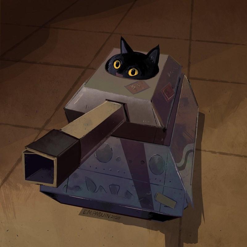 Cat - EMPAQUIN 2020