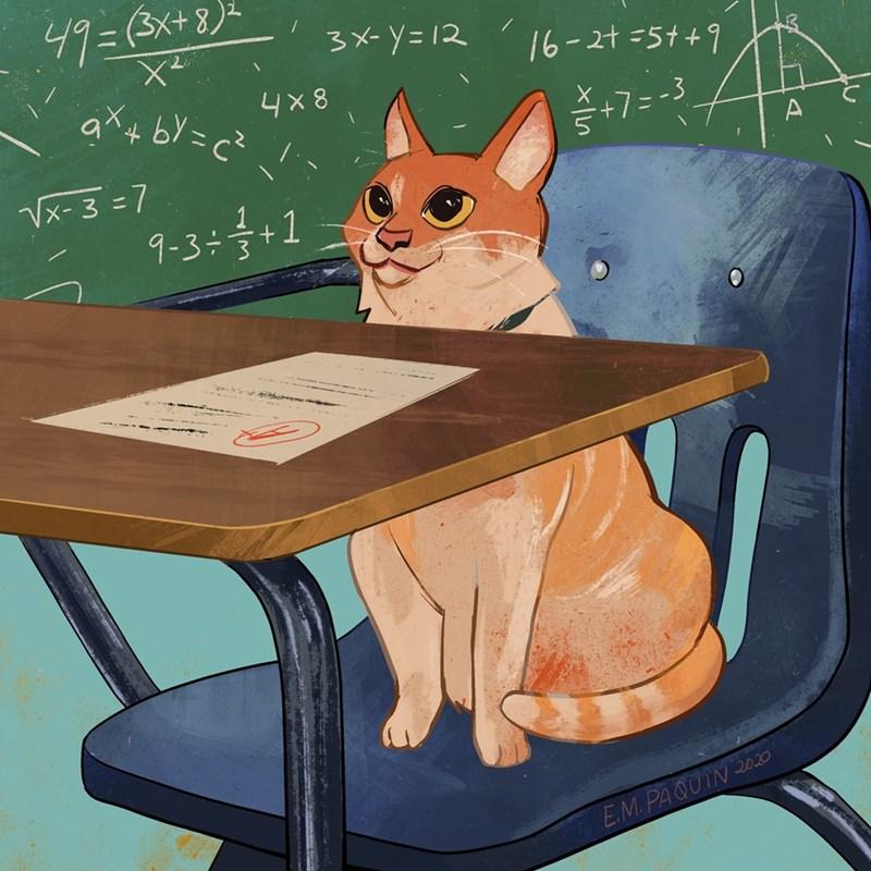 Cat - 49=(3x+8)2 3メ-y=12 16-2t=5t+9 16-24 =5++9 4x8 +73= -3 Vx- 3 =7 9-3÷+1 9-3+올+1 E.M. PAQUIN 2020