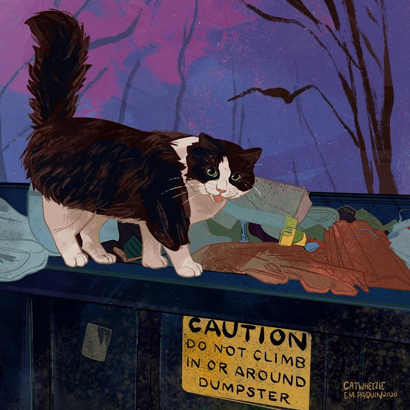 Cat - CAUTION DO NOT CLIMB IN OR AROUND DUMPSTER CATWHEEZIE EM.PAQUIN2020