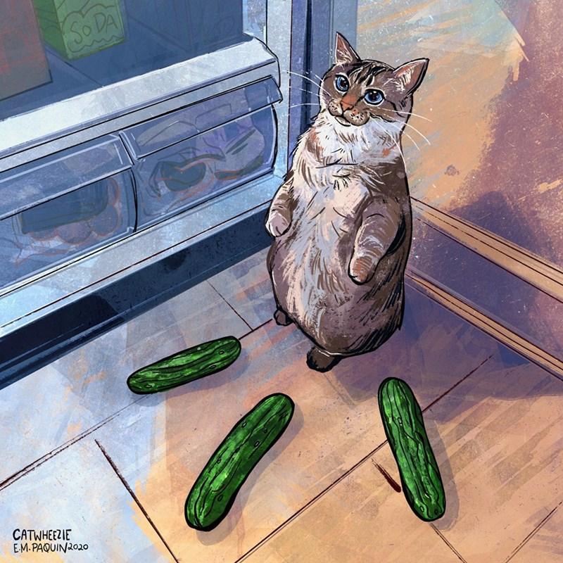 Cat - SO DA CATWHEEZIE EM.PAQUIN2020