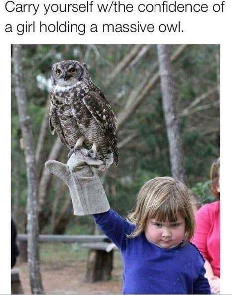 Owl - Carry yourself w/the confidence of girl holding a massive owl. a