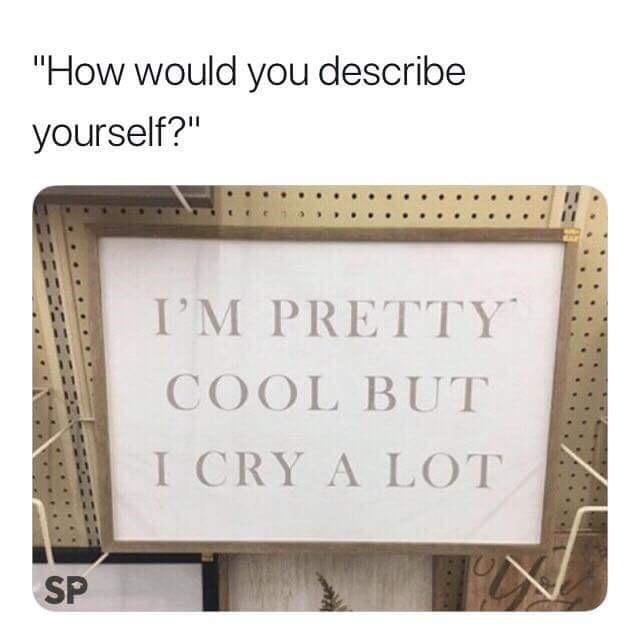 """Text - """"How would you describe yourself?"""" I'M PRETTY COOL BUT I CRY A LOT SP"""