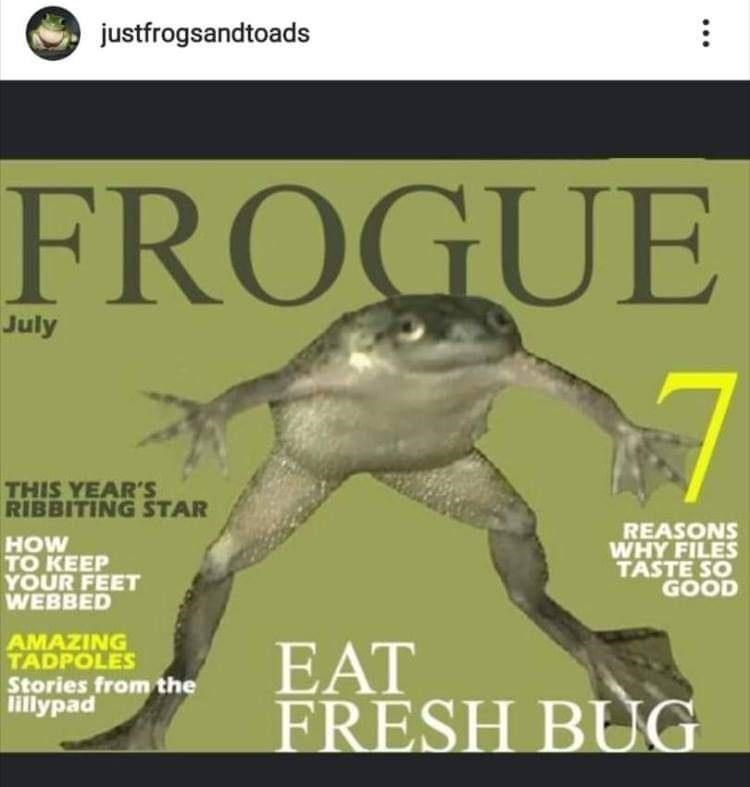 Frog - justfrogsandtoads FROGUE July THIS YEAR'S RIBBITING STAR HOW TО KEEP YOUR FEET WEBBED REASONS WHY FILES TASTE SO GOOD AMAZING TADPOLES EAT FRESH BUG Stories from the lillypad ...