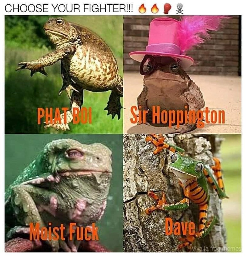 Toad - CHOOSE YOUR FIGHTER!!! PHATE ST Hopp ton weist Fuck ave Viva la frog memes