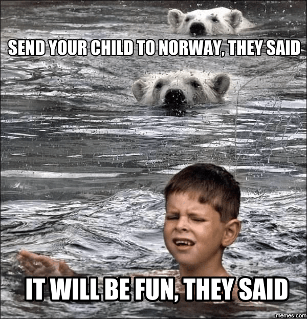 Facial expression - SEND YOUR CHILD TO NORWAY, THEY SAID IT WILL BE FUN, THEY SAID memes.com