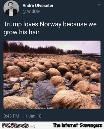 Text - André Ulveseter @AndUlv Trump loves Norway because we grow his hair. 8:43 PM 11 Jan 18 The Internet Scavengers