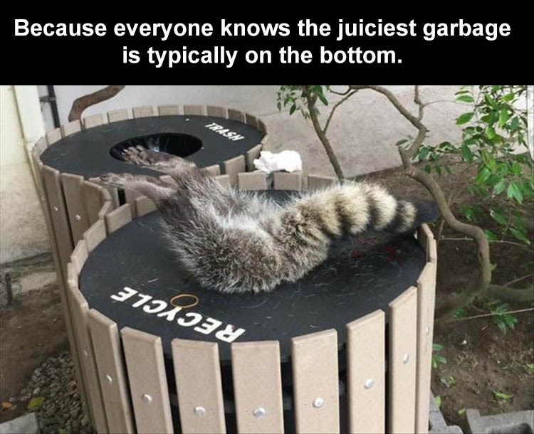 Photo caption - Because everyone knows the juiciest garbage is typically on the bottom. TRASH