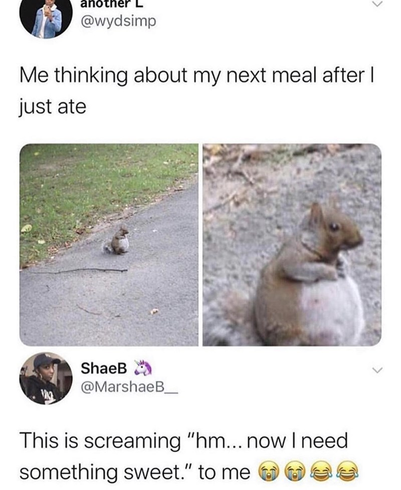 """Adaptation - another @wydsimp Me thinking about my next meal after I just ate ShaeB A @MarshaeB_ This is screaming """"hm... now I need something sweet."""" to me"""