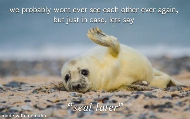 """Seal - we probably wont ever see each other ever again, but just in case, lets say """"seal later"""" made with mematic"""
