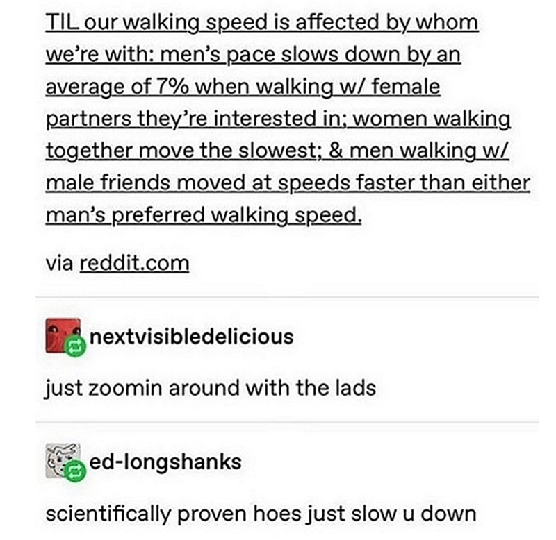 Text - TIL our walking speed is affected by whom we're with: men's pace slows down by an average of 7% when walking w/ female partners they're interested in; women walking together move the slowest; & men walking w/ male friends moved at speeds faster than either man's preferred walking speed. via reddit.com nextvisibledelicious just zoomin around with the lads ed-longshanks scientifically proven hoes just slow u down