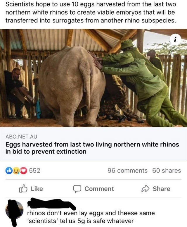 Adaptation - Scientists hope to use 10 eggs harvested from the last two northern white rhinos to create viable embryos that will be transferred into surrogates from another rhino subspecies. i ABC.NET.AU Eggs harvested from last two living northern white rhinos in bid to prevent extinction 552 96 comments 60 shares O Like Comment Share rhinos don't even lay eggs and theese same 'scientists' tel us 5g is safe whatever