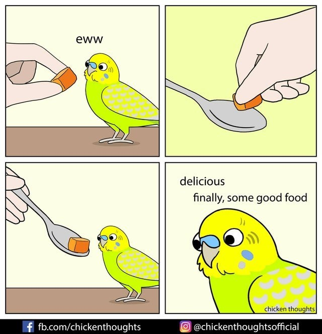 Bird - eww delicious finally, some good food chicken thoughts f fb.com/chickenthoughts O@chickenthoughtsofficial