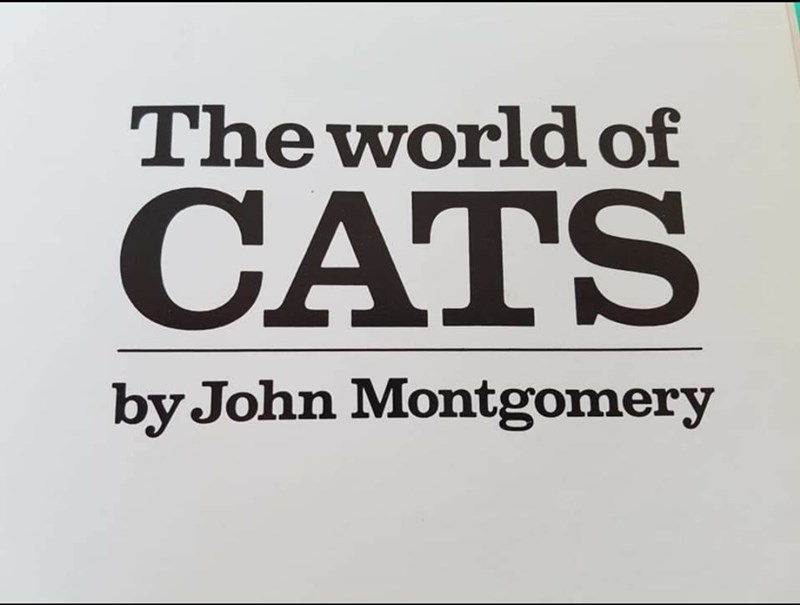 Font - The world of CATS by John Montgomery