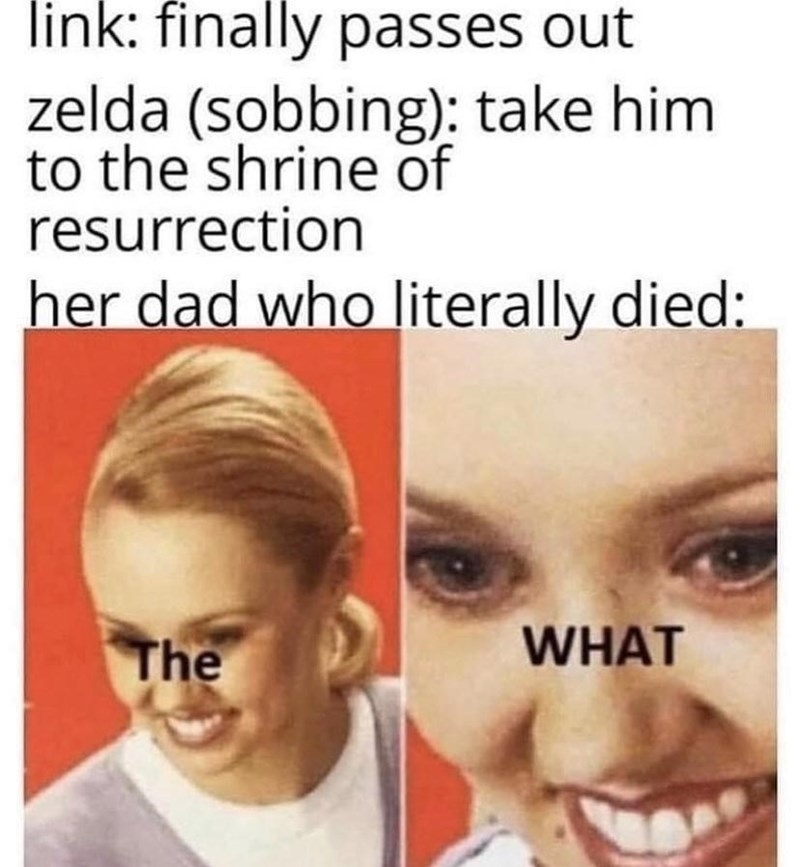 Face - link: finally passes out zelda (sobbing): take him to the shrine of resurrection her dad who literally died: The WHAT