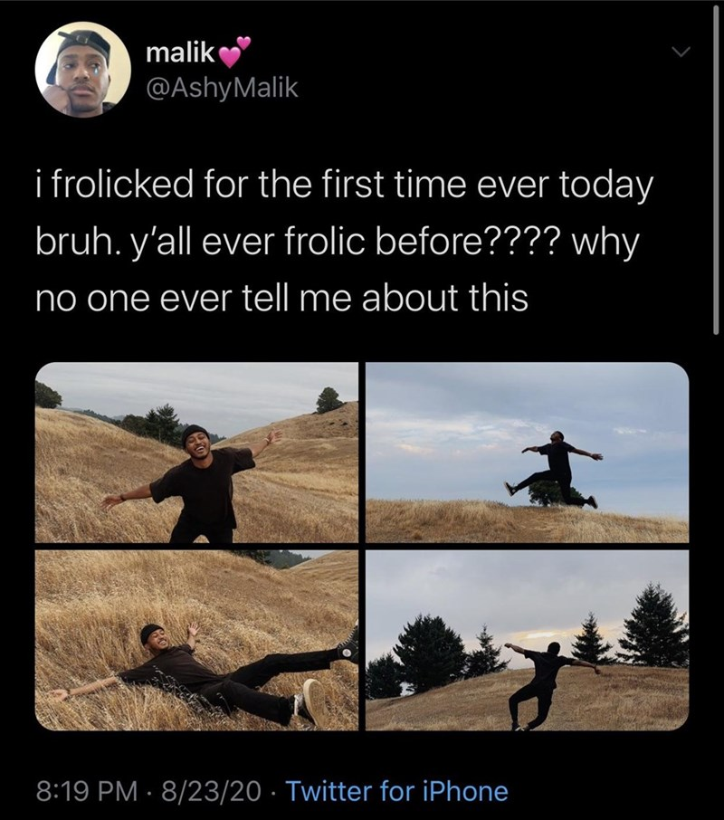Funny Twitter meme about a guy frolicking through a park, showing photos of him doing that | i frolicked for the first time ever today bruh. y'all ever frolic before??? ? why no one ever tell me about this