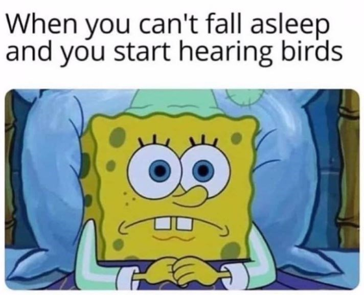 Cartoon - When you can't fall asleep and you start hearing birds
