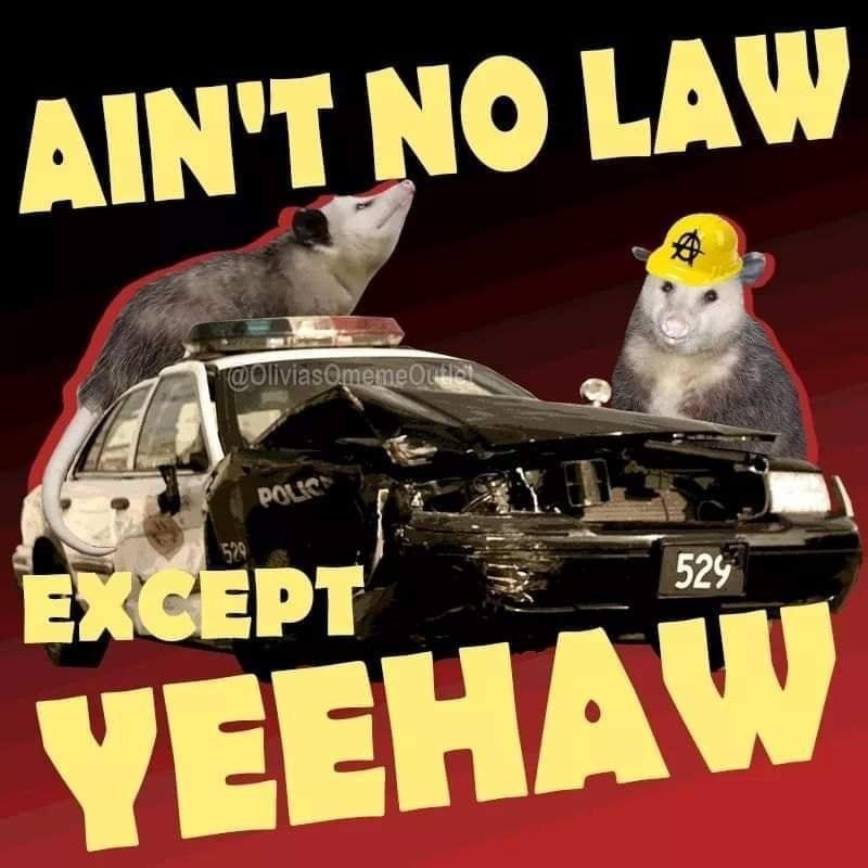Vehicle - AIN'T NO LAW @OliviasOmemeOutial POLIC 529 EXCEPT 529 YEEHAW