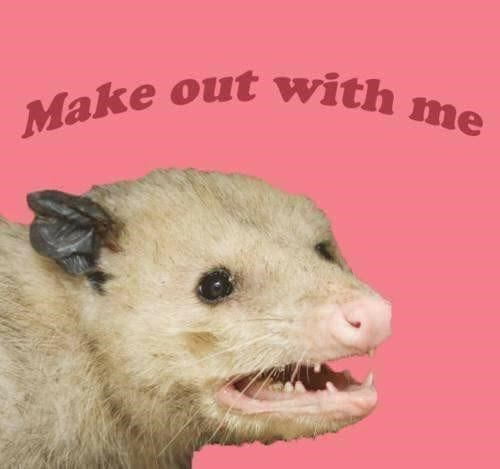 Vertebrate - Make out with me