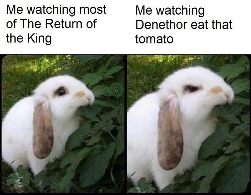 Vertebrate - Me watching Me watching most of The Return of the King Denethor eat that tomato