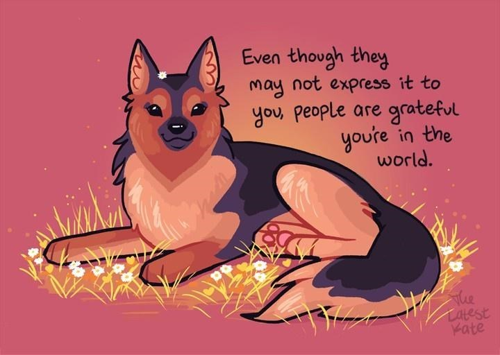 German shepherd dog - Even though they may not express it to you, people are grateful you're in the world. The Latest Kate