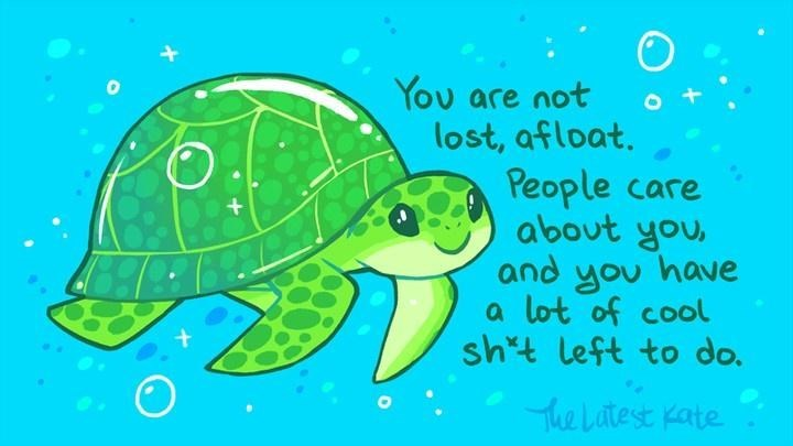 Sea turtle - You are not lost, afloat. People care about you, and you have a lot of cool sh*t left to do. The Latest Kate