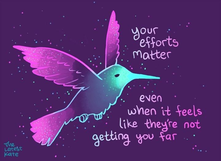 Hummingbird - your Pefforts Matter even when it feels like theyre not getting you far The Latest Kate