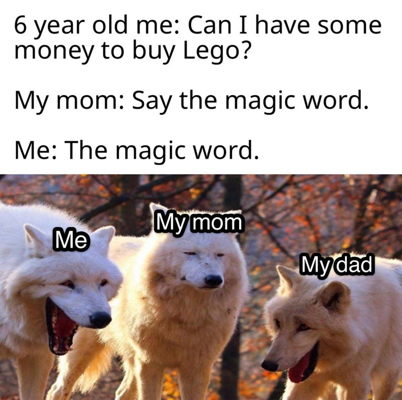 Mammal - 6. old me: Can I have some year money to buy Lego? My mom: Say the magic word. Me: The magic word. My mom Мymom Me Mydad