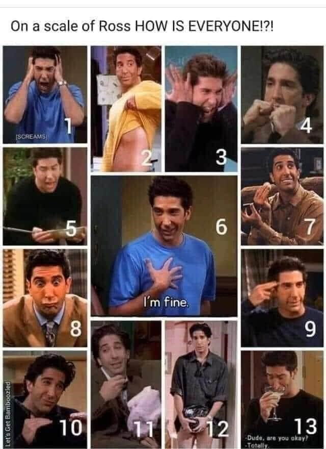 "Funny meme that reads, ""On a scale of Ross HOW IS EVERYONE?"" above 13 images of Ross from 'Friends' in different moods"