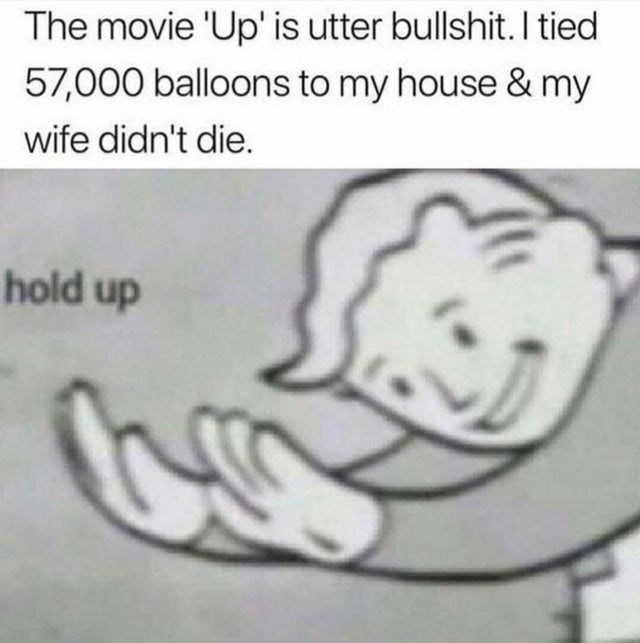 Text - The movie 'Up' is utter bullshit. I tied 57,000 balloons to my house & my wife didn't die. hold up