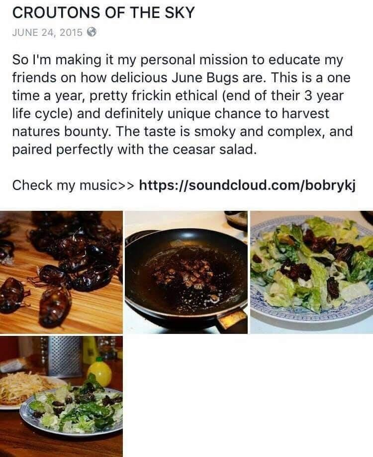 Food - CROUTONS OF THE SKY JUNE 24, 2015 O So I'm making it my personal mission to educate my friends on how delicious June Bugs are. This is a one time a year, pretty frickin ethical (end of their 3 year life cycle) and definitely unique chance to harvest natures bounty. The taste is smoky and complex, and paired perfectly with the ceasar salad. Check my music>> https://soundcloud.com/bobrykj