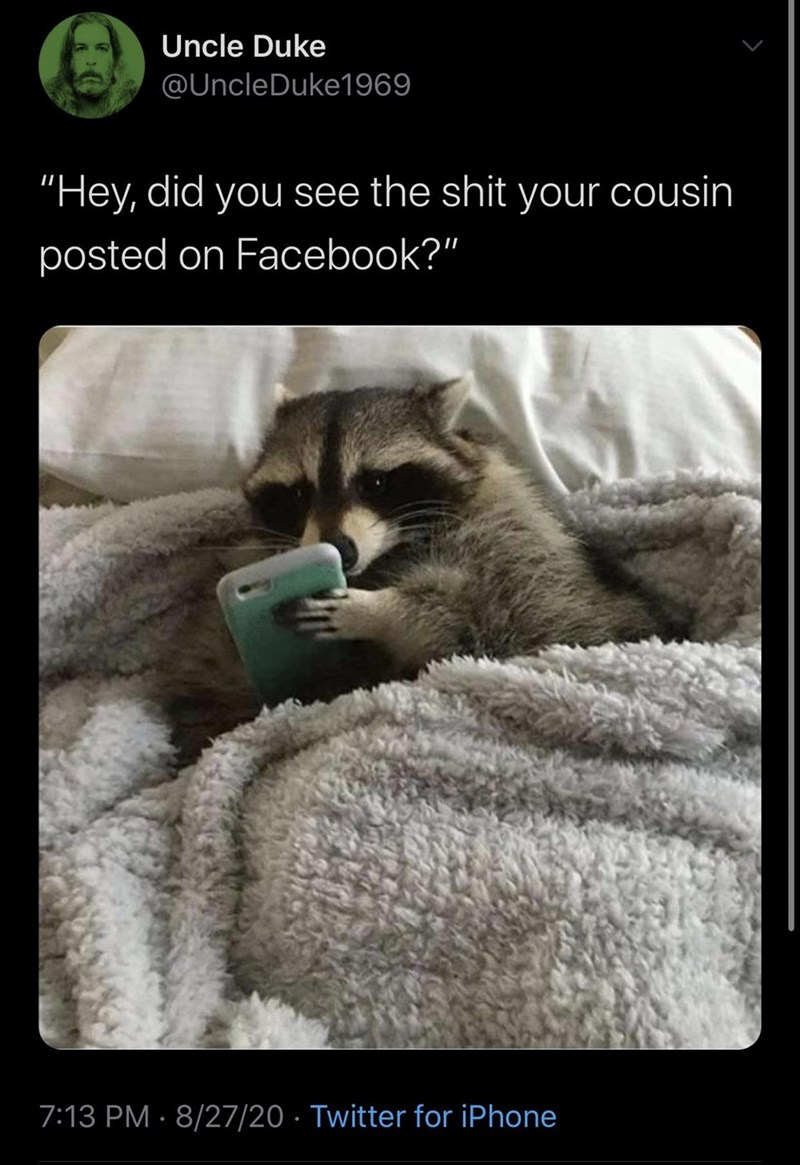 """Wildlife - Uncle Duke @UncleDuke1969 """"Hey, did you see the shit your cousin posted on Facebook?"""" 7:13 PM · 8/27/20 · Twitter for iPhone"""