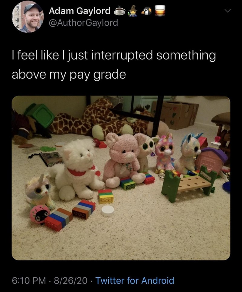 Teddy bear - Adam Gaylord @AuthorGaylord I feel like I just interrupted something above my pay grade 6:10 PM · 8/26/20 · Twitter for Android Public Librar