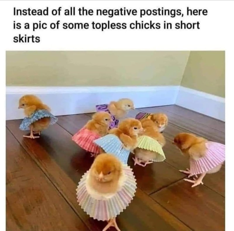 Organism - Instead of all the negative postings, here is a pic of some topless chicks in short skirts