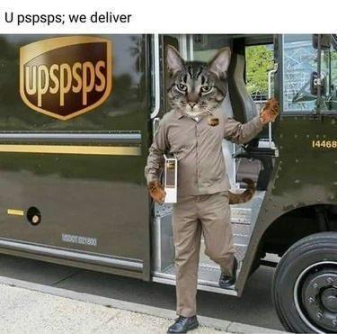 Mode of transport - U pspsps; we deliver Upspsps 14468 100T 21800